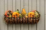 gourds-204929_150