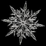 ice-crystal-64157_150